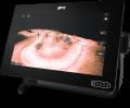 "Raymarine AXIOM+ 9RV Display 9"" eco/GPS"