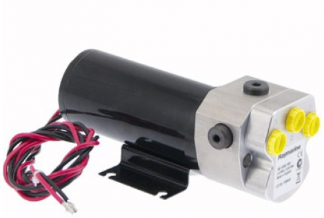 Raymarine pompa idraulica tipo 2 12v